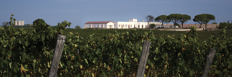 Masserie Puglia