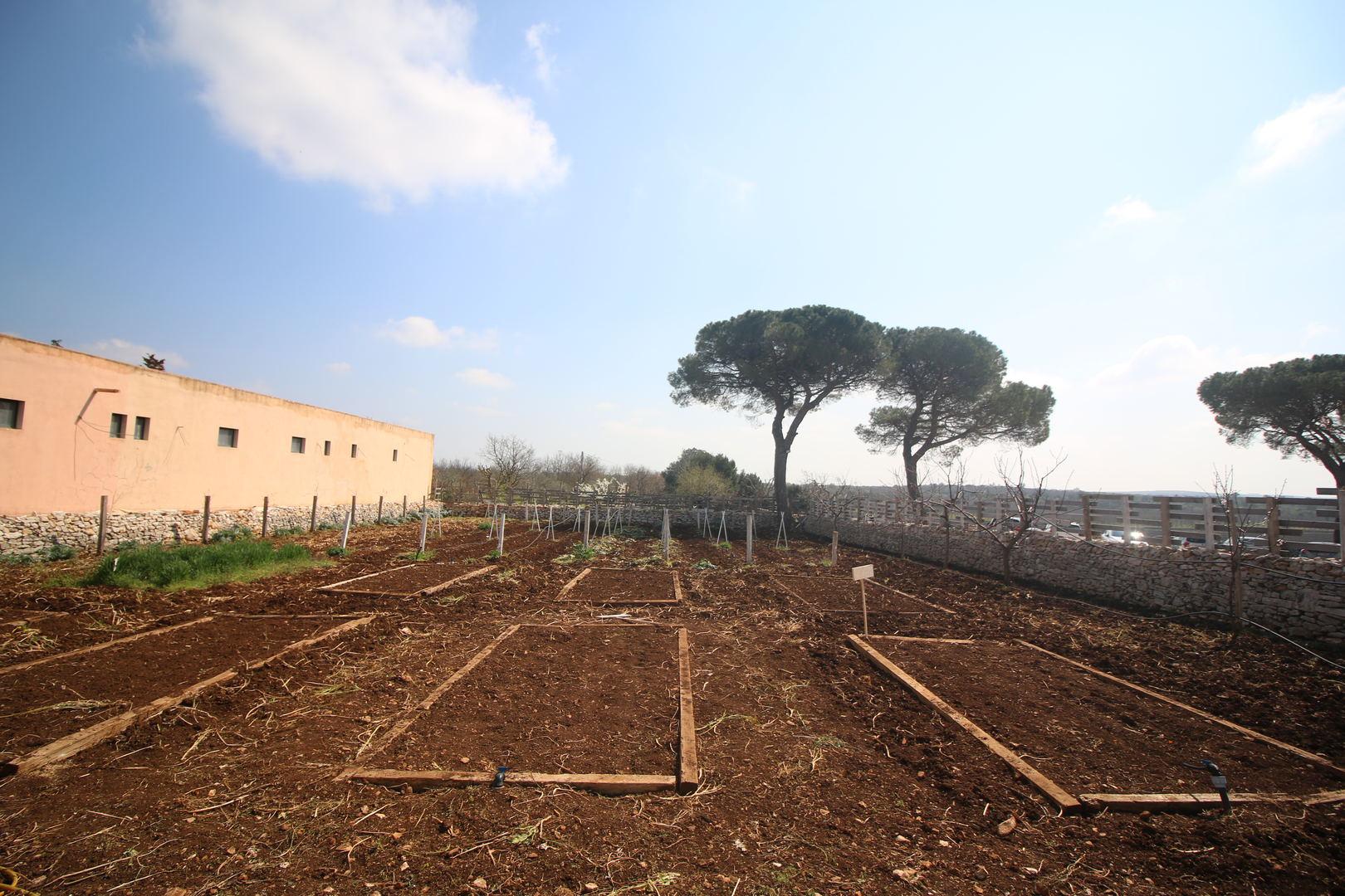 Orto Masseria