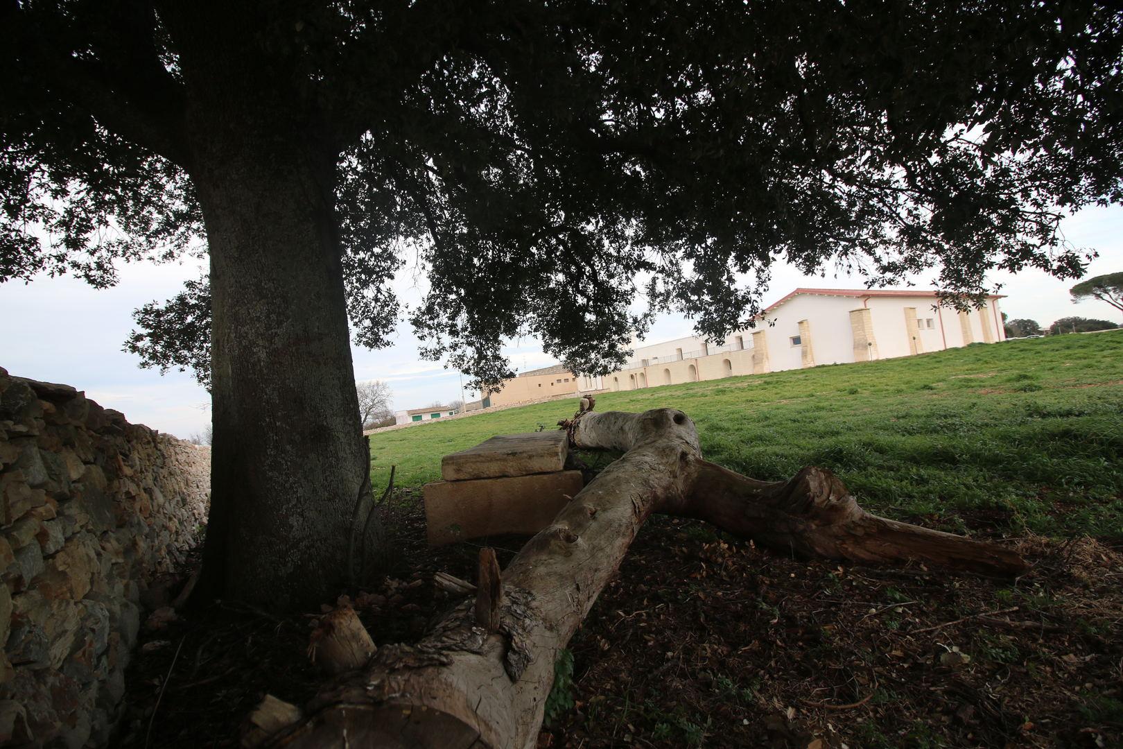 Masseria Didattica Puglia