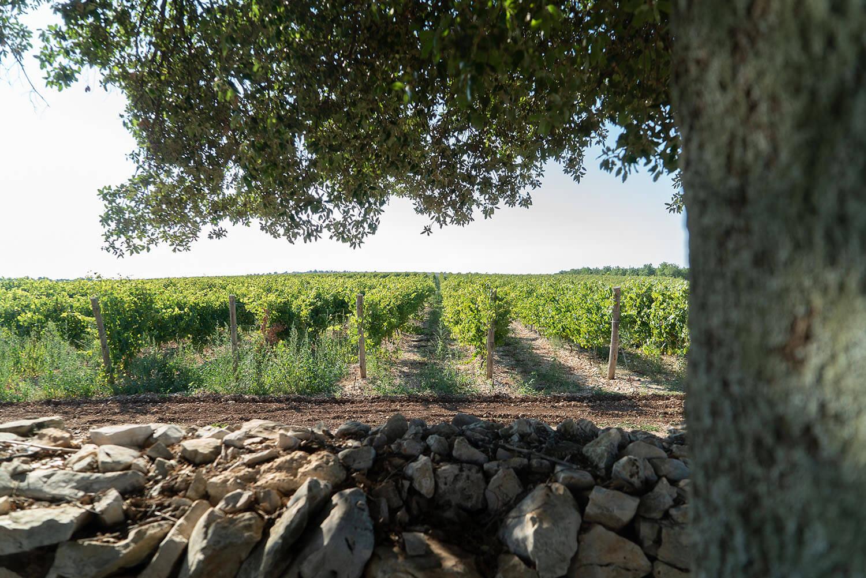 Masseria Puglia